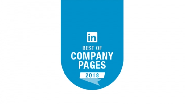 LinkedIn Top 10 Company Pages